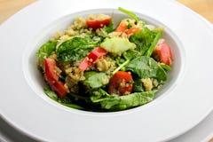 Salada do Quinoa imagem de stock