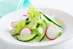 Salada do rabanete, do aipo e do pepino Imagens de Stock Royalty Free