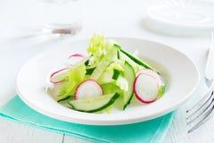 Salada do rabanete, do aipo e do pepino Imagens de Stock