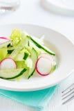 Salada do rabanete, do aipo e do pepino Fotografia de Stock Royalty Free
