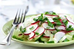 Salada do Radish Fotografia de Stock Royalty Free