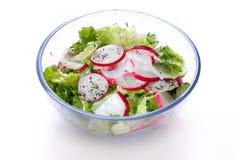 Salada do Radish e da alface Fotografia de Stock Royalty Free