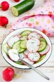 Salada do Radish e do pepino Fotografia de Stock Royalty Free