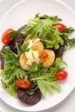 Salada do Scallop com limpeza do aç6frão Imagens de Stock