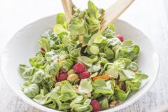 Salada do serviço dos cânones, das framboesas, das passas, das azeitonas, das porcas, das cenouras e das sementes Imagem de Stock