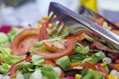 Salada do tomate fotos de stock royalty free
