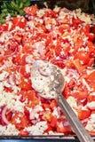 Salada do tomate com queijo fotografia de stock royalty free