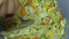 Salada do vegetal da agitação vídeos de arquivo