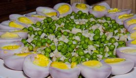 Salada do vegetal da mola foto de stock royalty free