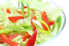 Salada do vegetariano imagem de stock royalty free