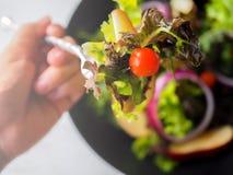 Salada do vegetariano Imagens de Stock