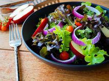 Salada do vegetariano Fotos de Stock Royalty Free