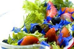 Salada do verão Fotografia de Stock Royalty Free
