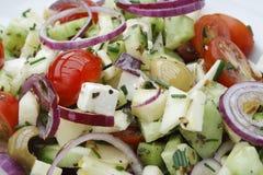 Salada do verão Imagem de Stock Royalty Free