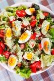 Salada do verão com tomates e ovos cozidos Fotos de Stock