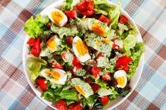 Salada do verão com tomates e ovos cozidos Foto de Stock Royalty Free