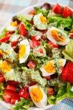 Salada do verão com tomates e ovos cozidos Fotos de Stock Royalty Free
