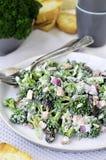Salada 2 dos brócolos Fim acima fotografia de stock