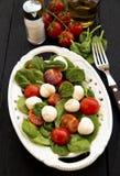 Salada dos espinafres Fotos de Stock Royalty Free