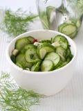 Salada dos pepinos e do alho Fotografia de Stock