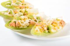 Salada dos salmões e do abacate nas folhas da chicória Fotografia de Stock Royalty Free