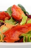 Salada dos salmões fumado Foto de Stock