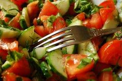 Salada dos tomates e dos pepinos Imagens de Stock