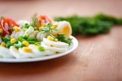 Salada e calamar do ovo imagens de stock royalty free
