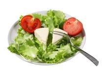 Salada e queijo Imagem de Stock Royalty Free