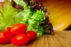 Salada e tomates da alface Foto de Stock