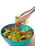 Salada e vegetais frescos Imagens de Stock