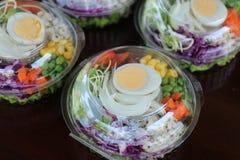 Salada em um pacote Fotografia de Stock