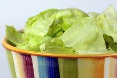 Salada em um prato Foto de Stock Royalty Free