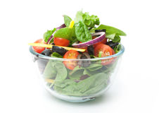 Salada em uma bacia Foto de Stock Royalty Free