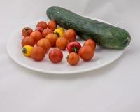 Salada em uma placa Imagens de Stock
