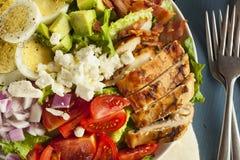Salada entusiasta saudável de Cobb imagem de stock