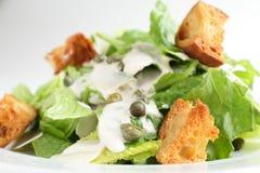Salada europeia fria e saboroso Fotos de Stock Royalty Free