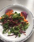 Salada feliz fresca Fotografia de Stock Royalty Free