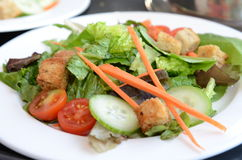 Salada fresca fotos de stock royalty free