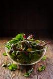 Salada fresca Fotografia de Stock Royalty Free