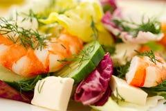 Salada fresca com camarão imagem de stock