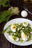 Salada fresca com ovo e verdes imagens de stock royalty free