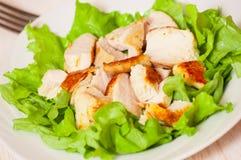 Salada fresca com peito de galinha fotos de stock royalty free