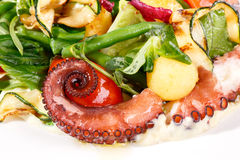 Salada fresca com polvo Imagem de Stock Royalty Free