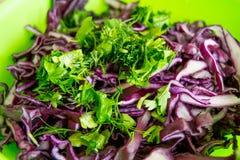 Salada fresca - couve vermelha e salsa em uma placa verde - vista próxima Foto de Stock Royalty Free