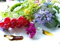 Salada fresca crua Fotografia de Stock Royalty Free