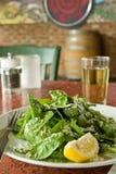 Salada fresca do arugula imagens de stock