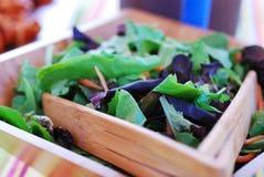 Salada fresca do jardim imagens de stock royalty free