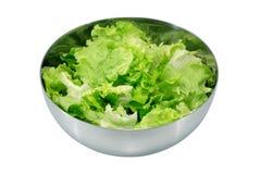 Salada fresca do jardim Fotos de Stock Royalty Free