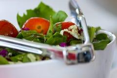 Salada fresca do jardim em uma bacia. Foto de Stock Royalty Free
